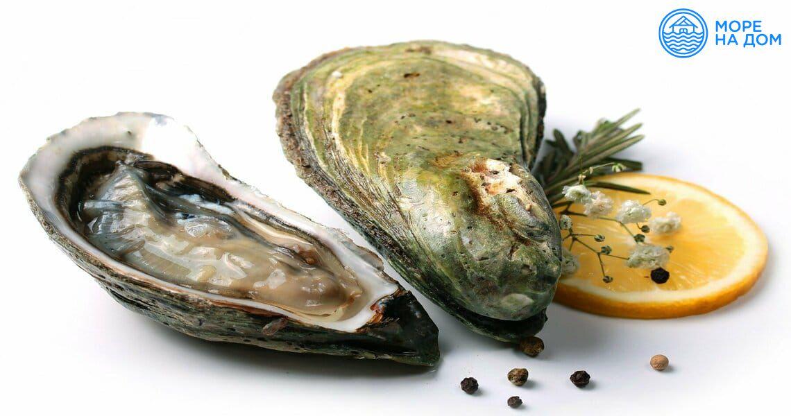 Свежие устрицы и блюда из морепродуктов