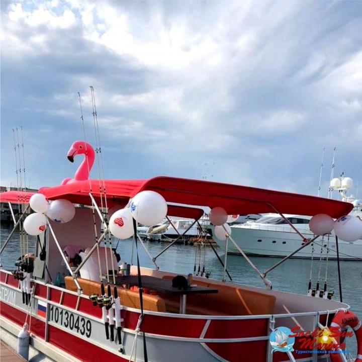 Морская прогулка на тримаране | 1,5 часа | Порт Сочи
