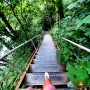 Квадро-тур «Целебный источник» | Прогулка на квадроциклах 2,5 часа | Барановка